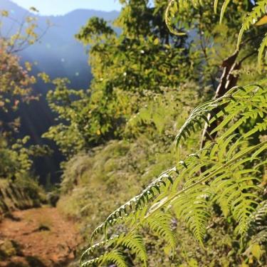 Erodoto108 Il Reportage di Viaggio  Cartolina dal Costa Rica