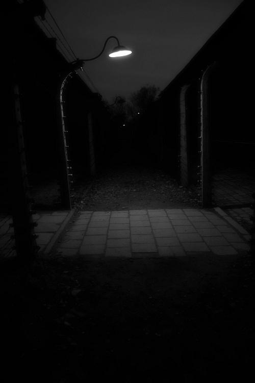 Poland Birkenau (Concentration Camps) 2010